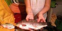 Кизомыс 29- 31 марта 2015 рыбалка (рыдалка) на тарань и карася