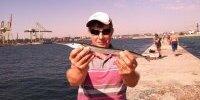 Шпора 24 августа- рыбалка на саргана