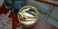 Морская рыбалка в Одессе на Даче Ковалевского.